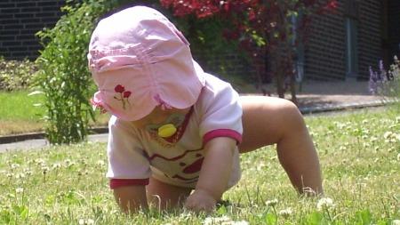 Land-und-Kind.de: Entdeckungsreise eines Landkinds auf der grünen Wiese